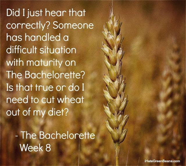 funny bachelorette recap-Bachelorette Kaitlyn Week 8