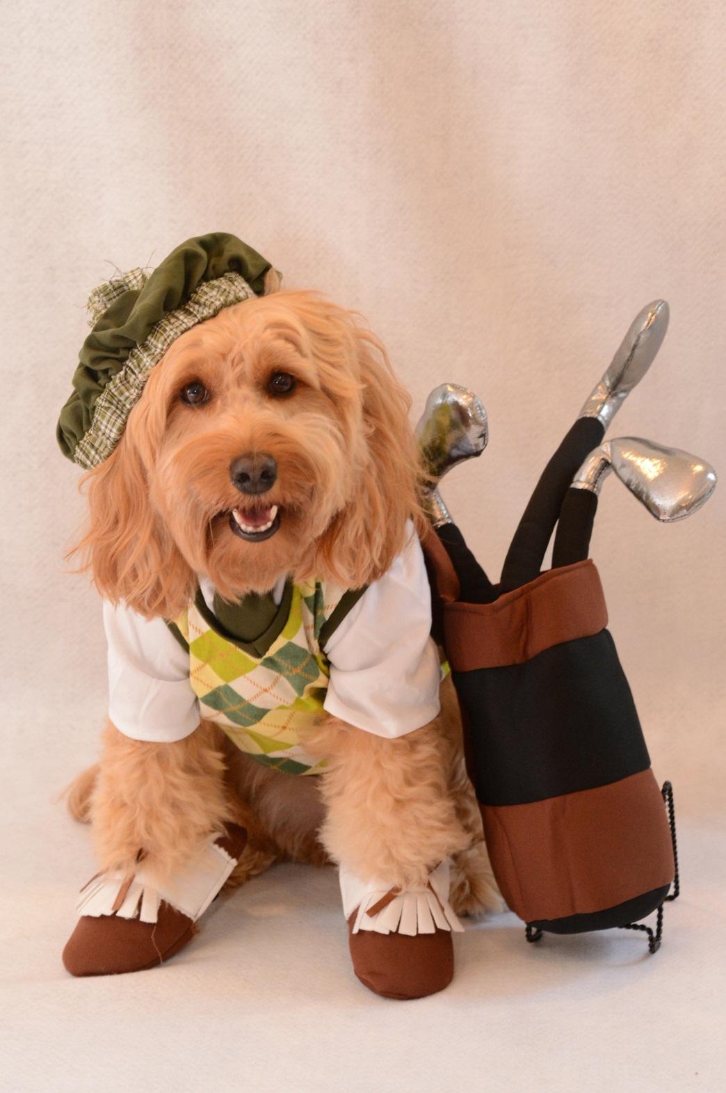 Beasley Golfer Costume